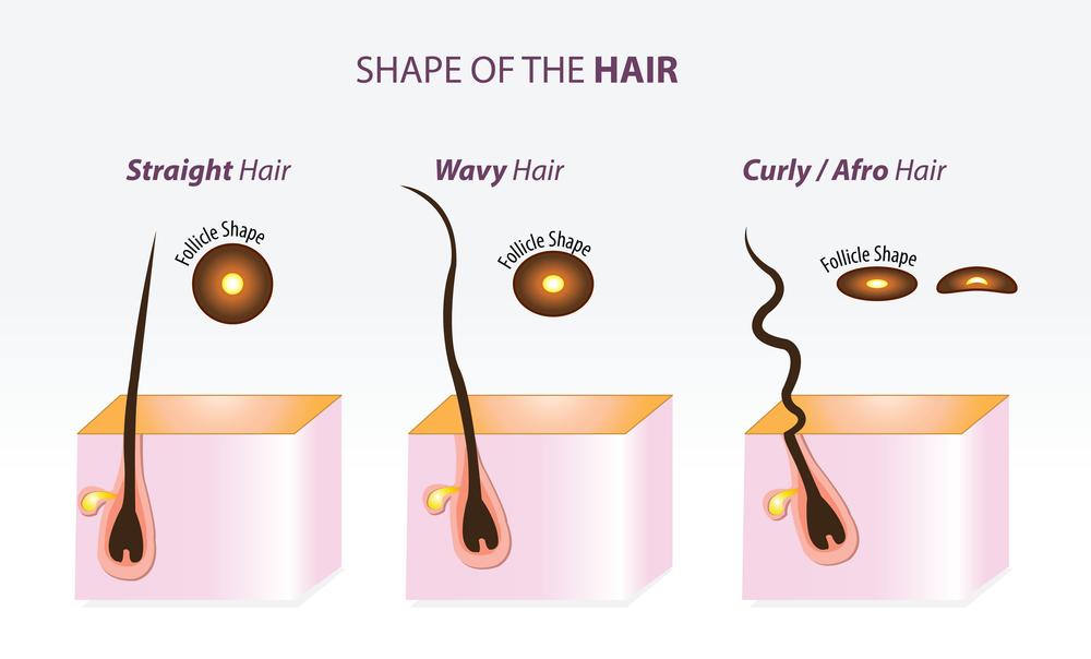 BLACK HAIR STRAND SHAPES