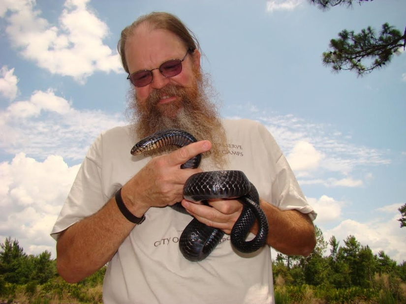 GLH holding an eastern indigo snake (Drymarchon couperi) at the Central Florida Zoo's Orianne Center for Indigo Conservation (photograph by Timothy J. Walsh)