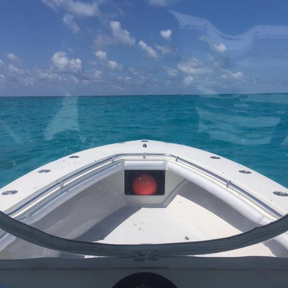 seacraftbow.jpg