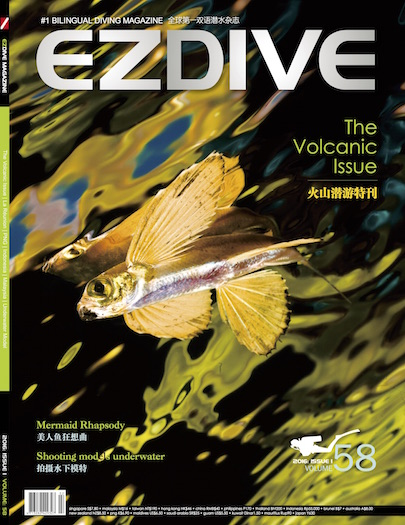 ezdive cover flying fish.jpg