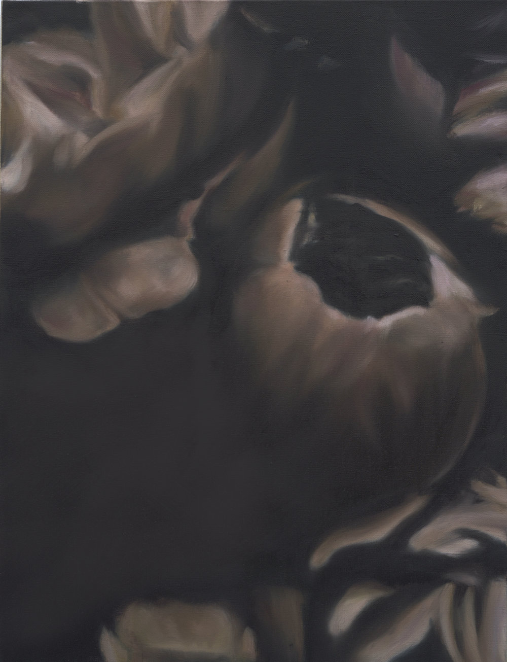 Language des fleurs et des choses muettes No.4,  2016  oil on linen, 36 x 36 in, 91 x 91 cm
