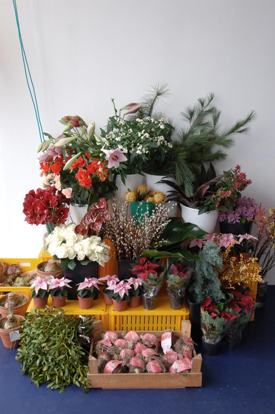 niche_bloemen_binnenweg_rotterdam