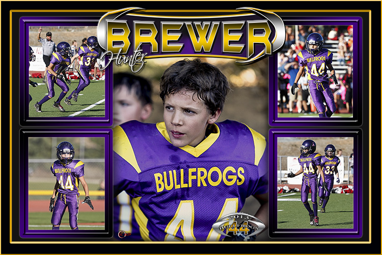 2013bullfrogsBREWER copy.jpg