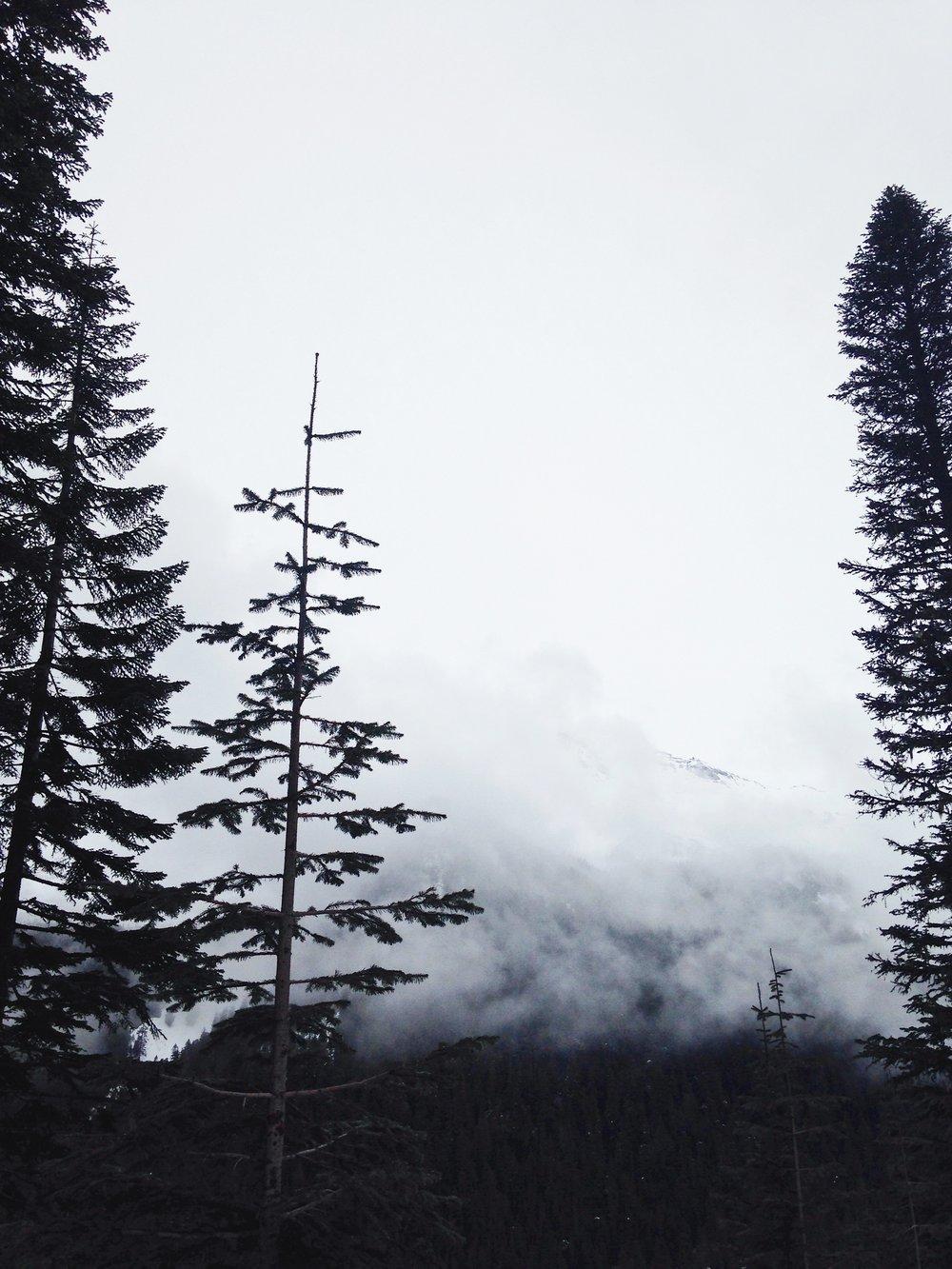 Mt. Rainier. © E.A. Crunden