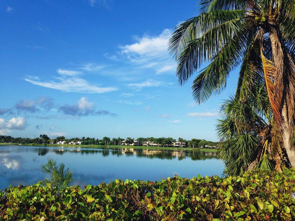 Florida. © E.A. Crunden