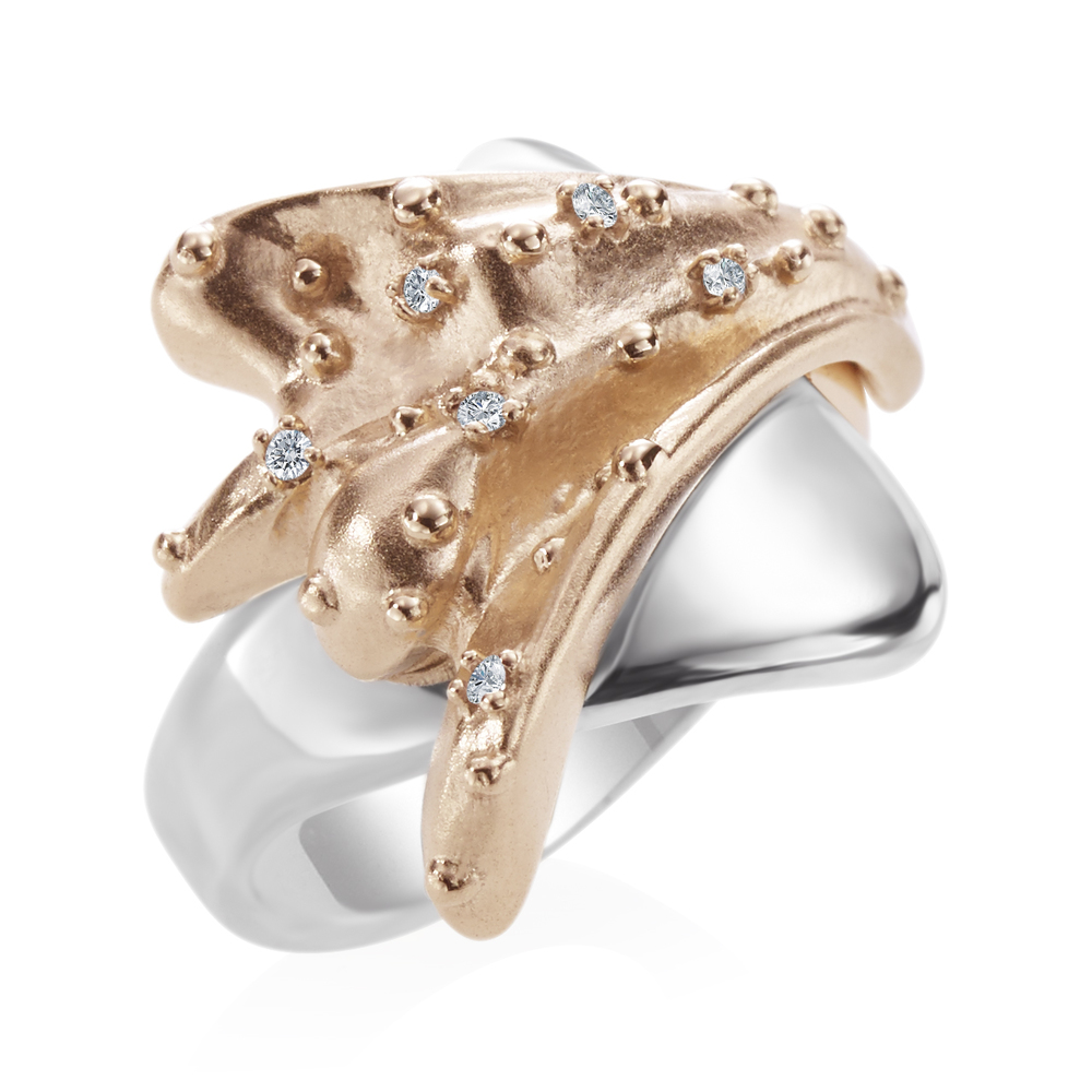 AlexandraGunnDesignsLLC_Splash ring.jpg