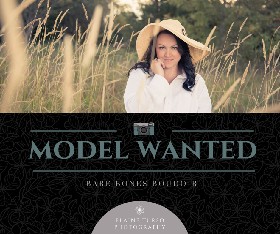model wanted (1).png