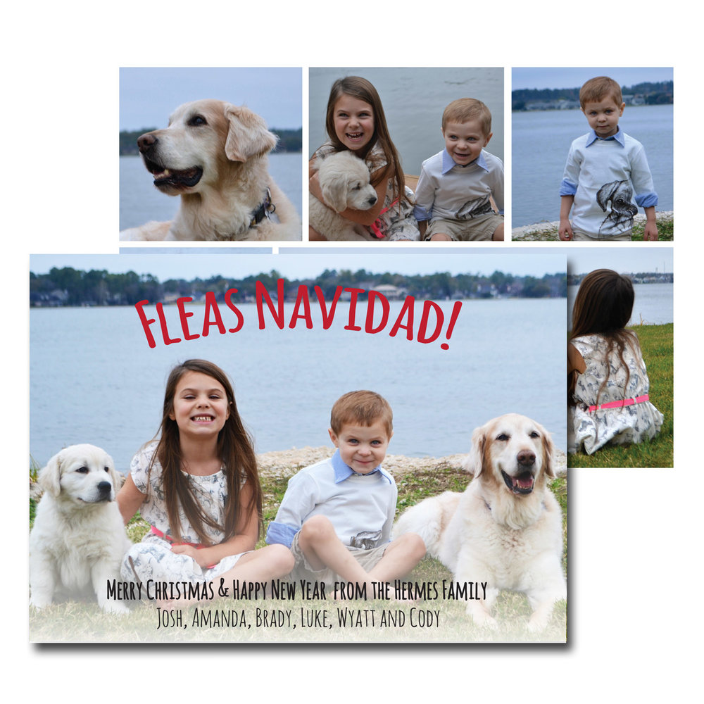dog themed fleas navidad christmas card with photos.jpg