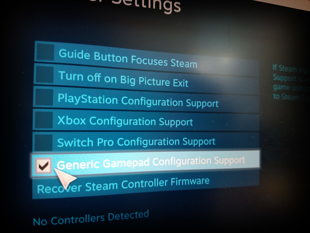 Steam Detected Controllers