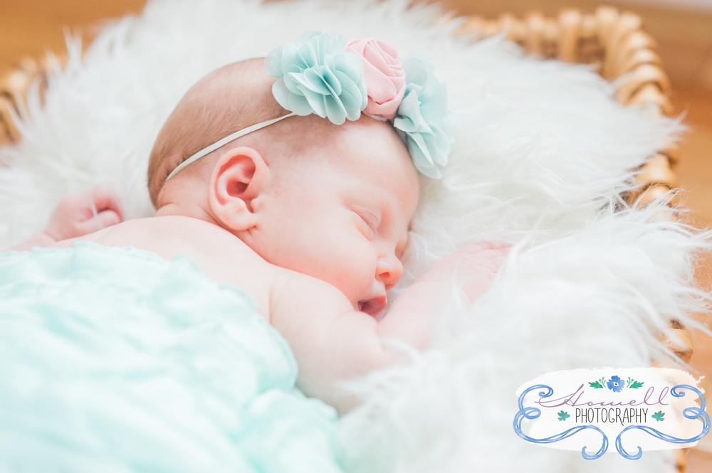 Newborn Portrait in Cleveland Tennessee