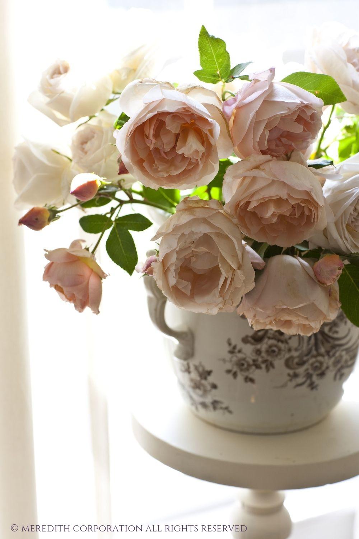 W-Romantic Roses.jpg