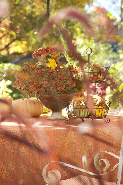 Autumn tablescape.jpg