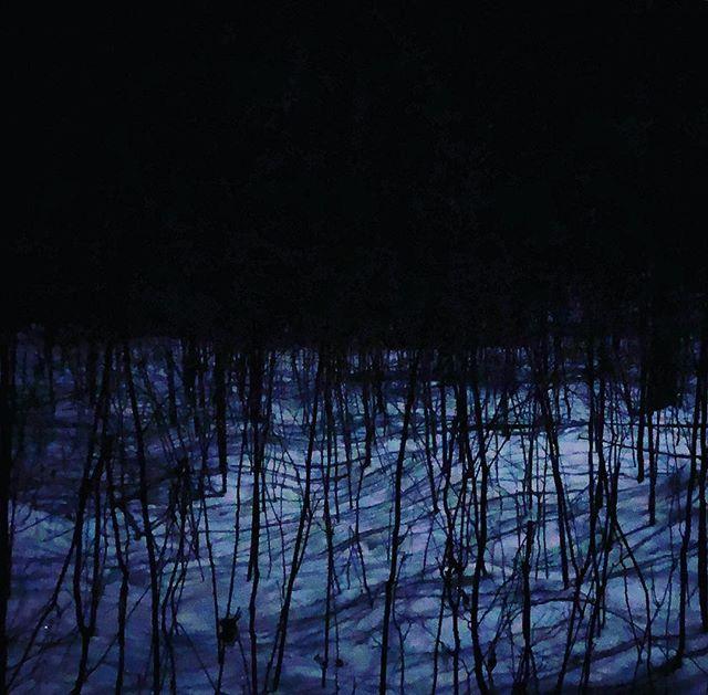 Moon light #stgermain