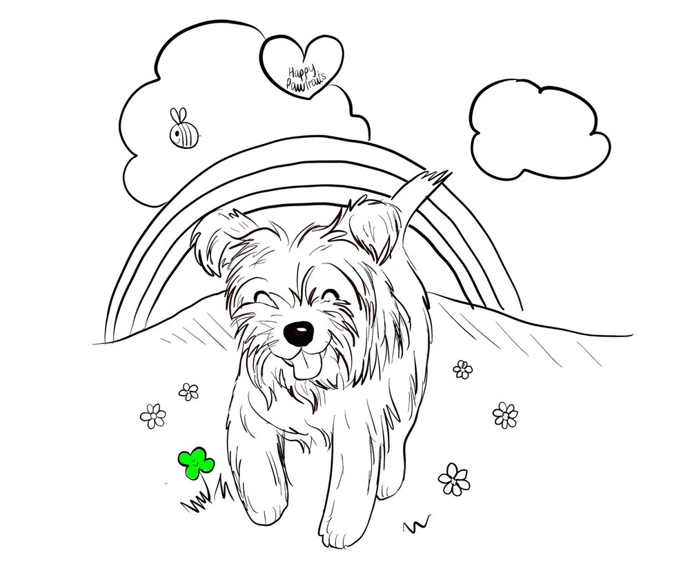 teddy cairn terrier illustration happy paw traits