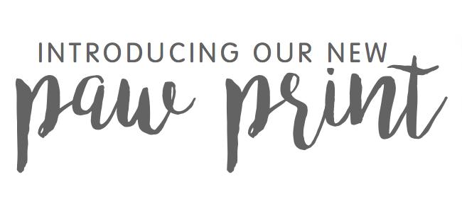 bearhugs paw print branding.png