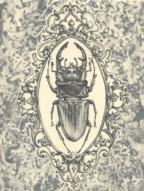 Beati Coleoptera