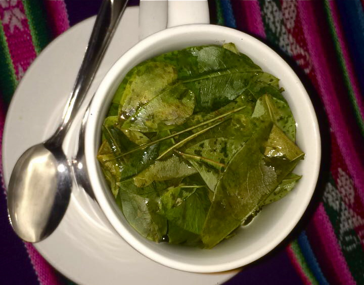 Chewed as much Coca Leaves and drank tea as I could when I felt sick. Starting to believe Coca Leaf Tea cures everything!