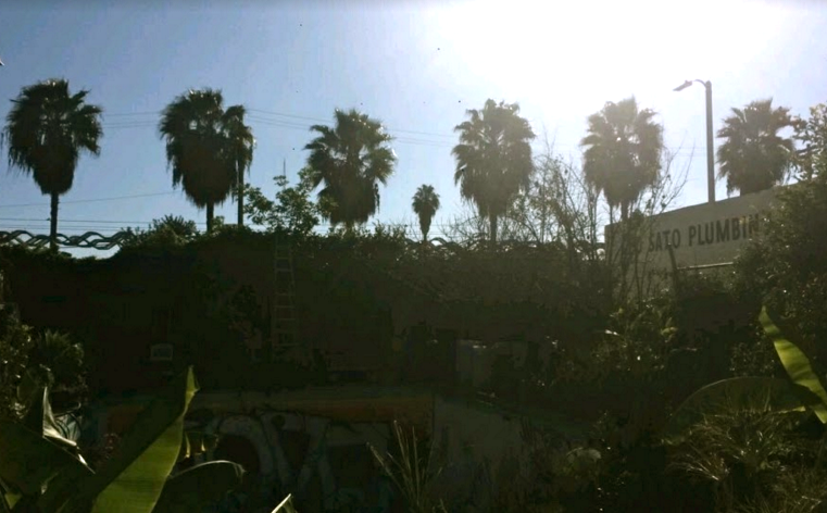 #foodisourfriend blog - a day at the Gansta Garden LA, Ron Finley