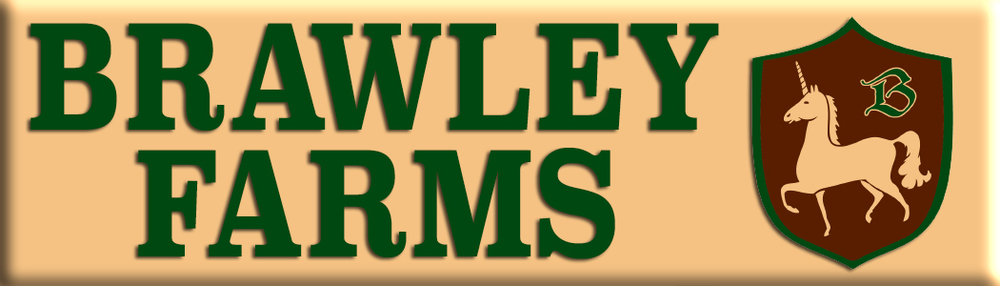 brawley logo 3.5 x 1 for web.jpg