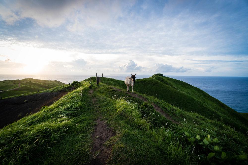 Rolling hills - basco, batanes