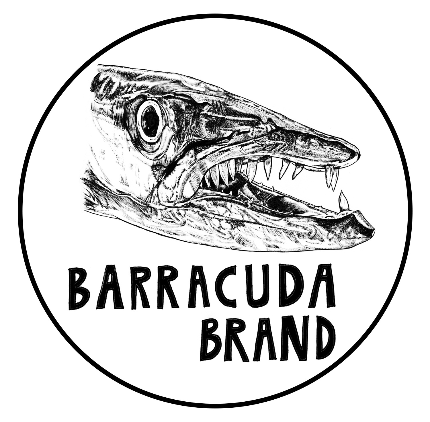 Barracuda Brand