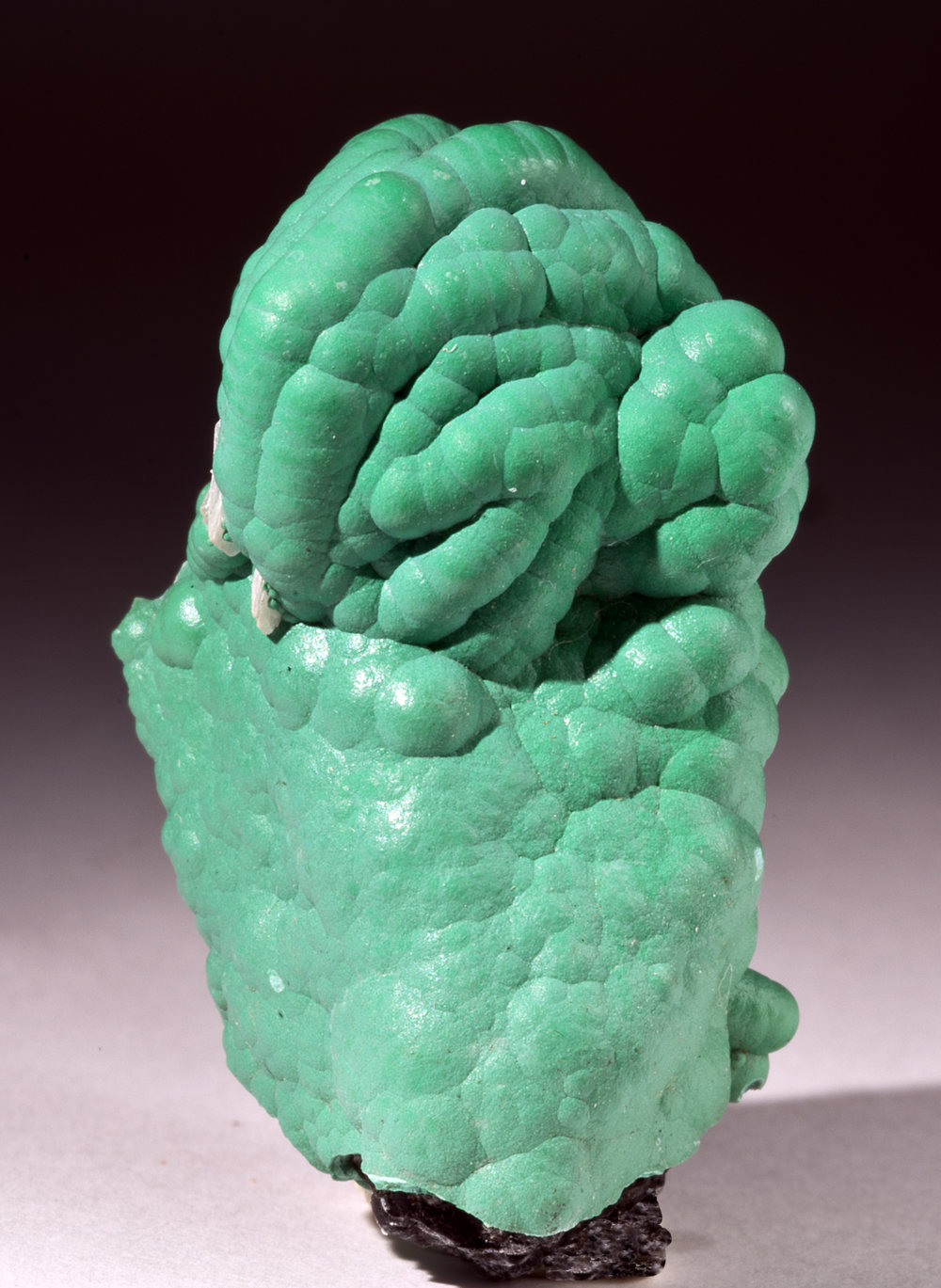Malachite from the Planet Mine.jpg