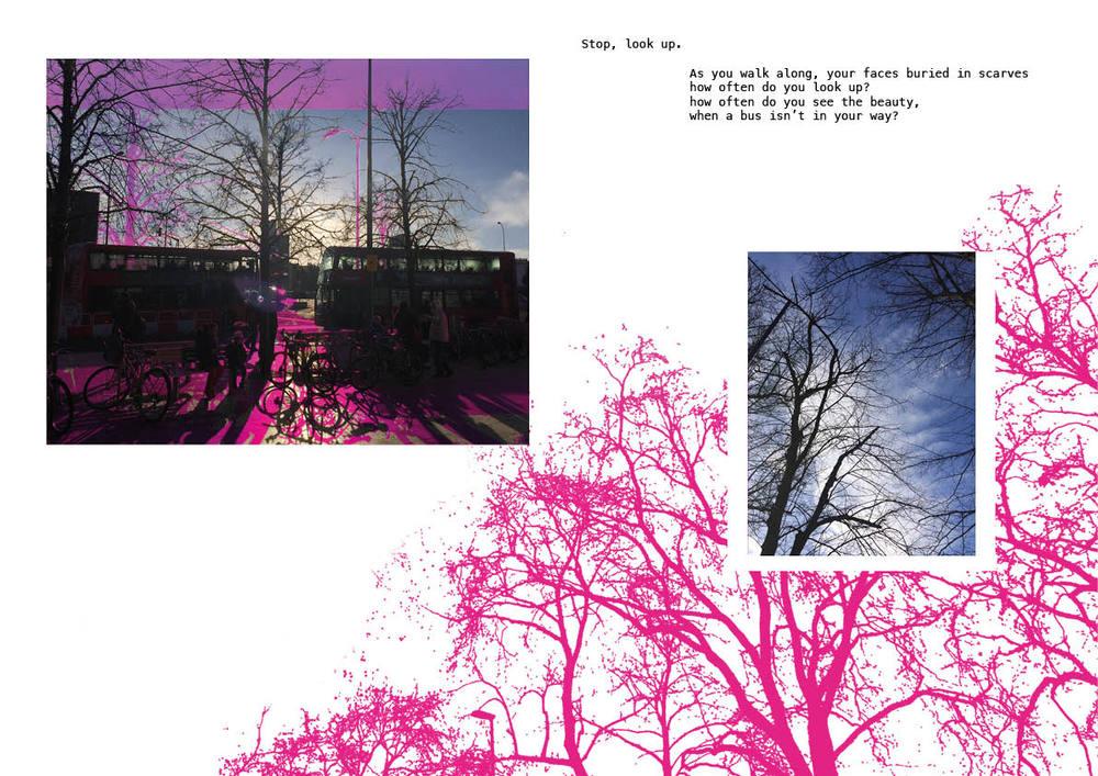 Winter Trees 23.jpg