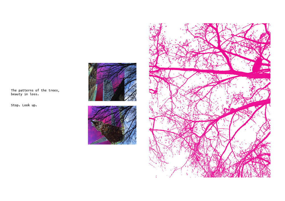 Winter Trees 25.jpg