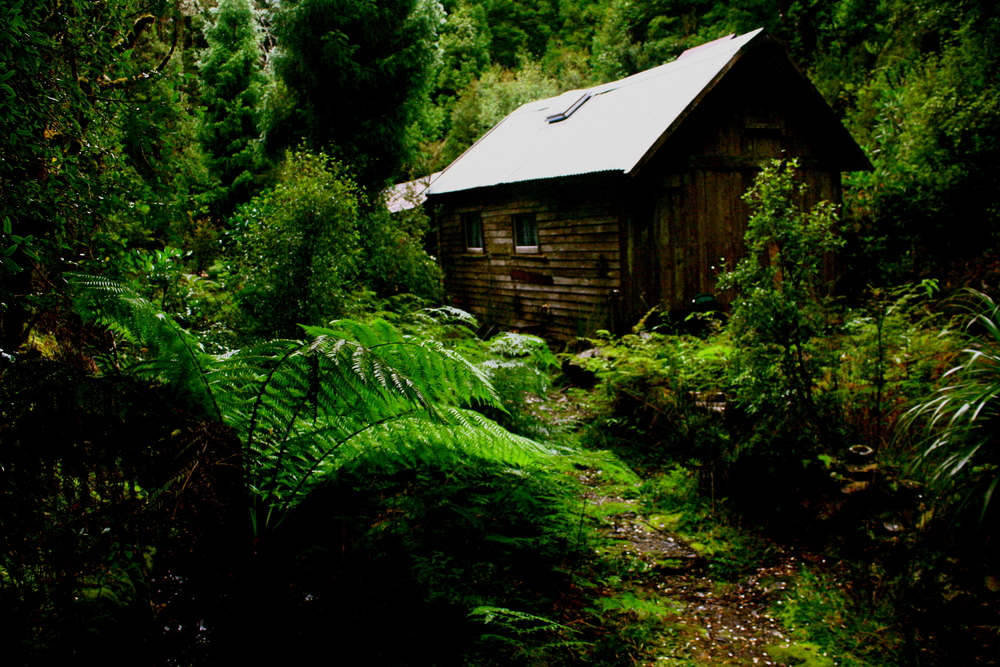 Faser Creek hut