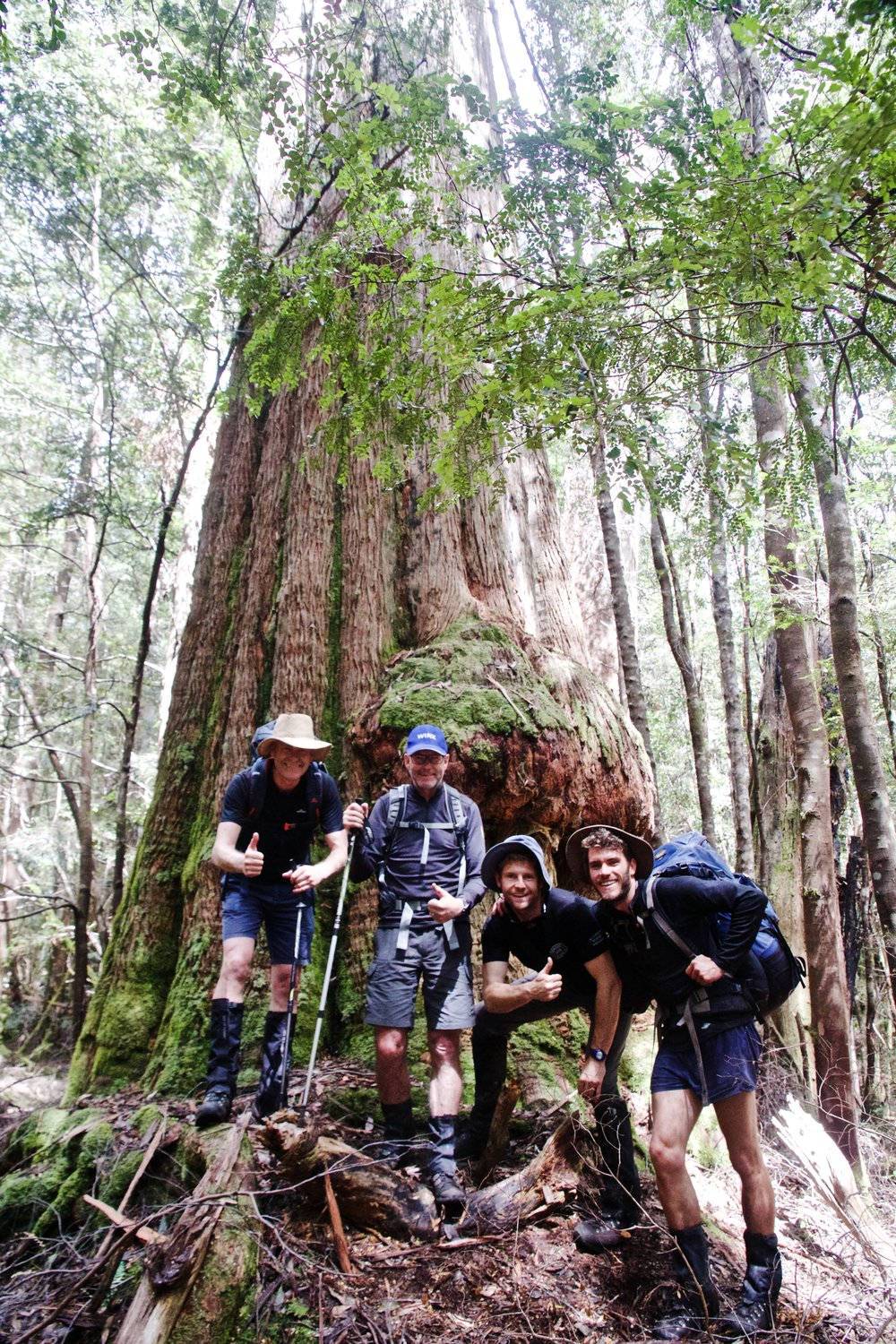 The Lads and The Largest Flowering Plant Species in the World!