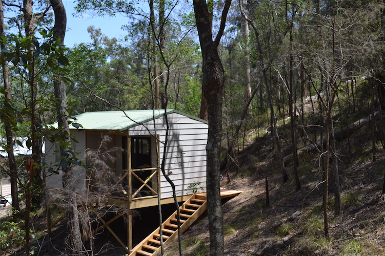 Cabin_accommodation_Springbrook_national_park_Yoga_teacher_trainees_gold_coast_akhanda_yoga_Retreat_centre.png