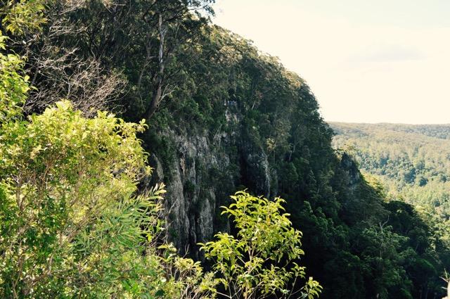 Springbrook_national_park_GoldCoast_Yoga_Teacher_training_Akhanda_Yoga_Australia_4.jpg