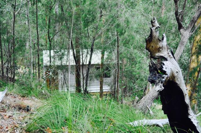 Akhanda_Yoga_Australia_Yoga_Teacher_training_retreat_centre_GoldCoast_4.jpg