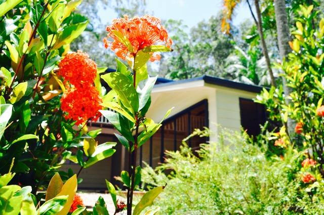 Yoga_StudiO_Akhanda_Yoga_Australia_Yoga_Teacher_training_retreat_centre_GoldCoast_26.jpg