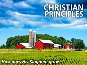 ChristianPrinciples (1)