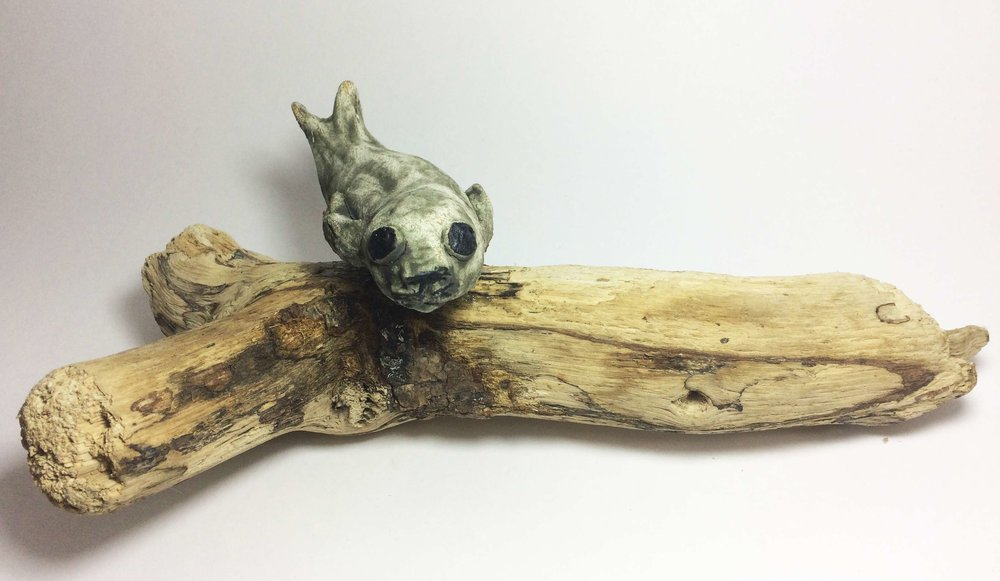 Tiny Seal of Driftwood