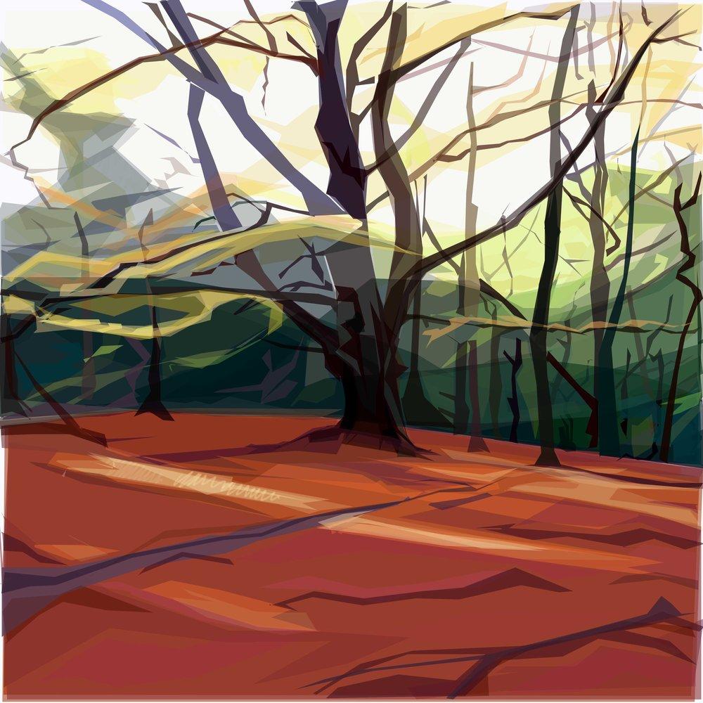 The Beech, Ecclesall Woods