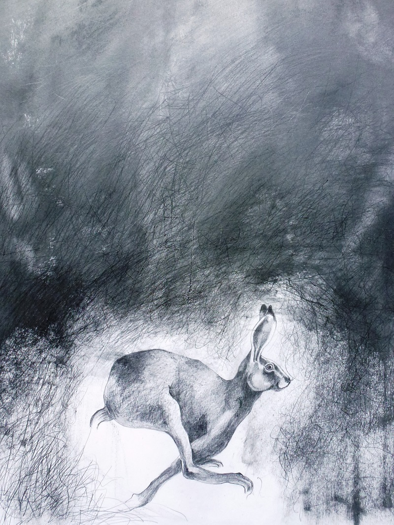 Mythic Hare