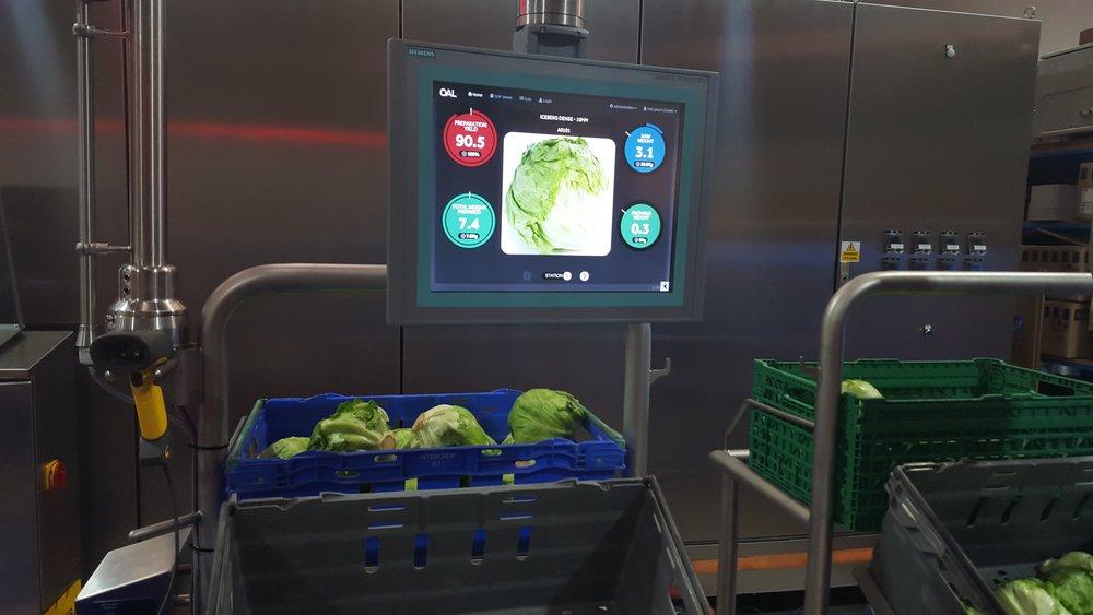 Vegetable preperation.jpg