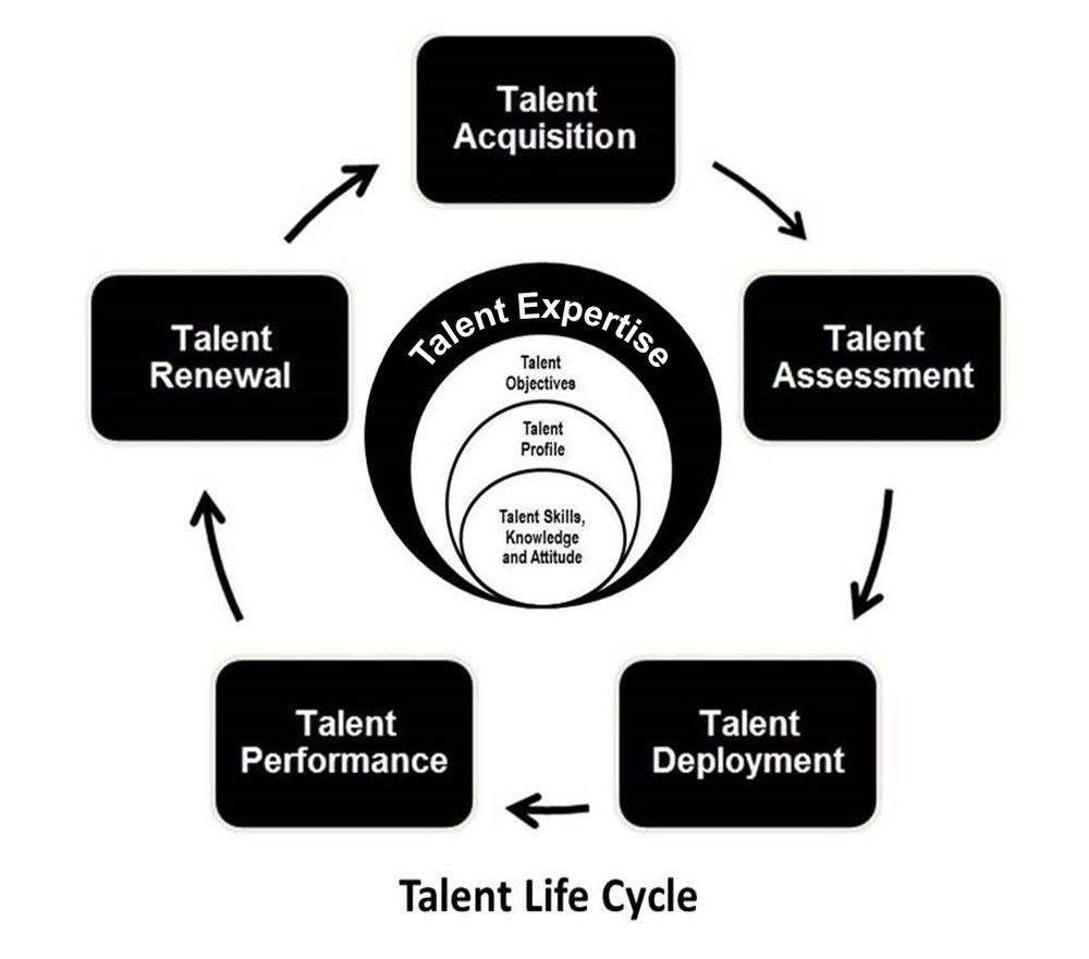 Talent Life Cycle