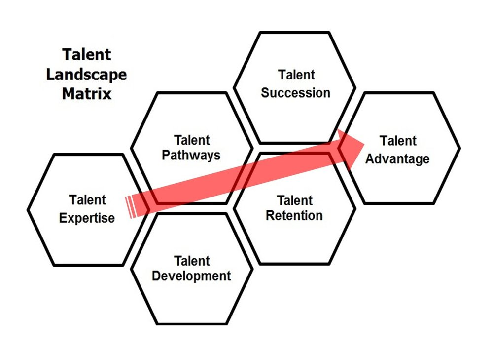 Talent Landscape Matrix