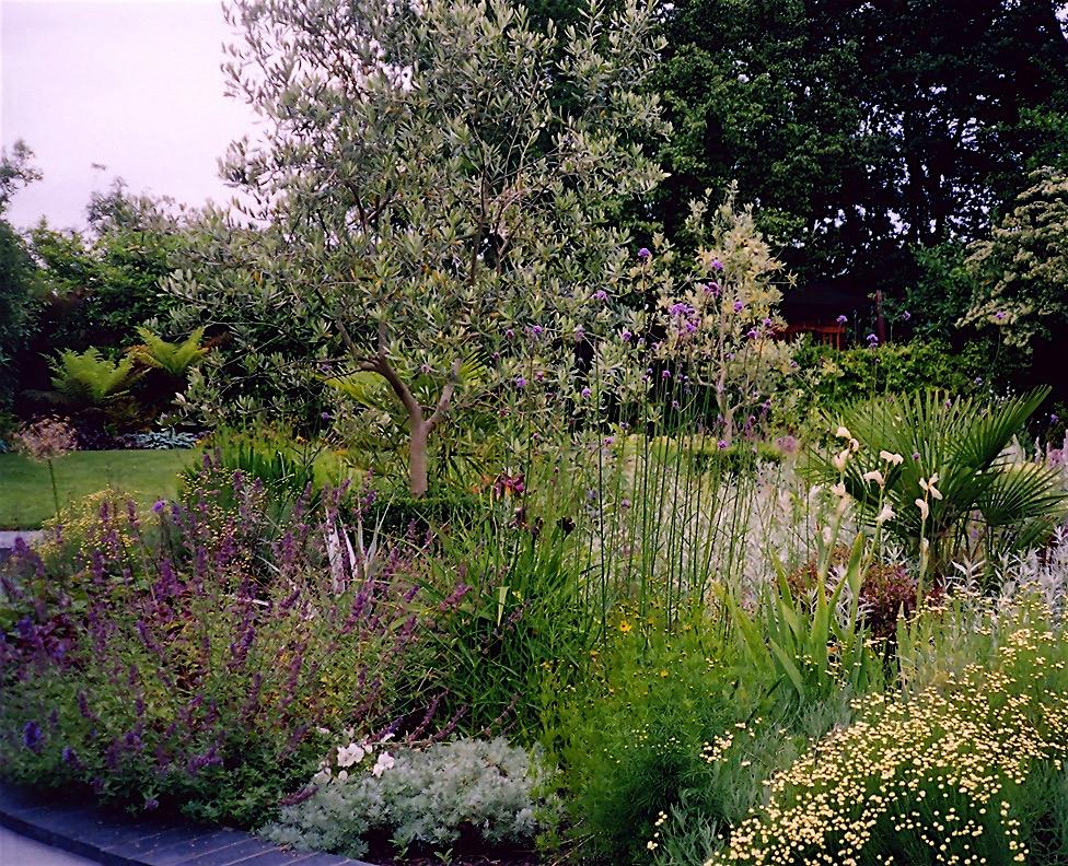 Art deco exotic pool garden for 1930s residence in for Garden design 1930