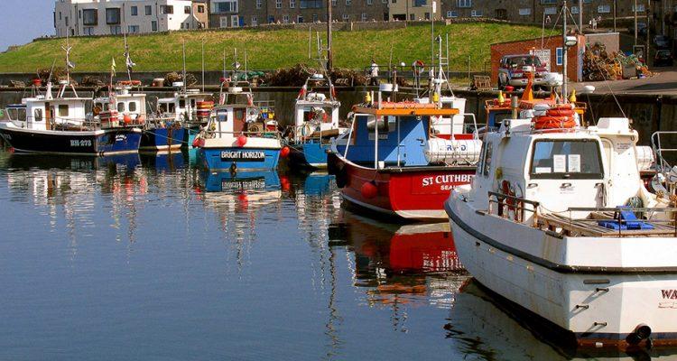boats-at-seahouses.jpg