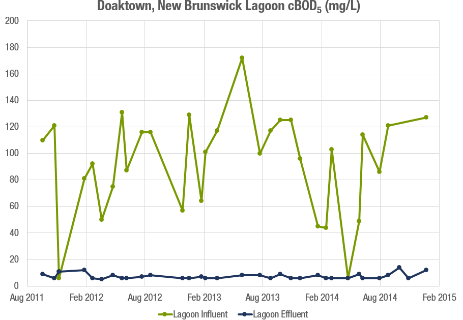 Doaktown cBOD5 Graph.png