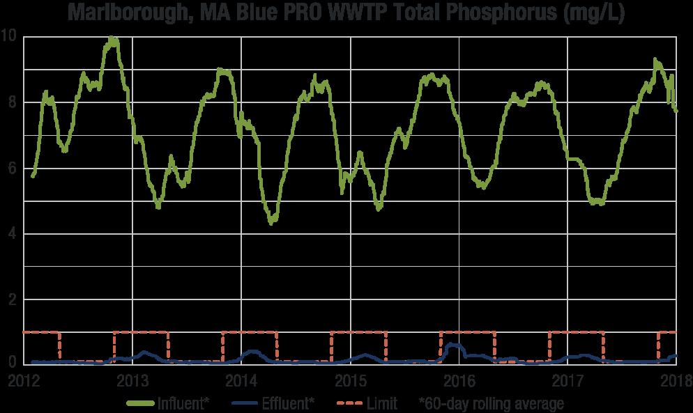 Blue-PRO-Marlborough-Graph-TP.png