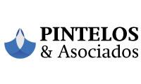 Pintelos & Asociados 200x120.jpg