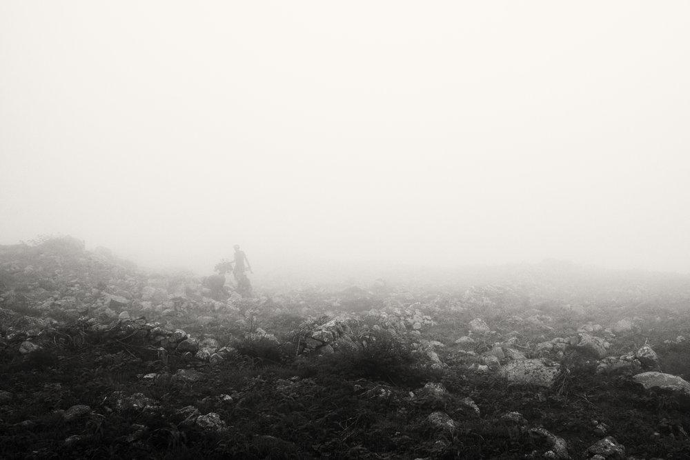 Farmer in the mist