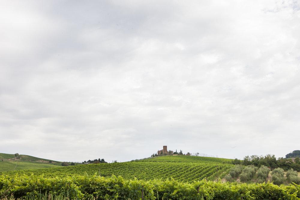 Tuscany & Florence-6.jpg
