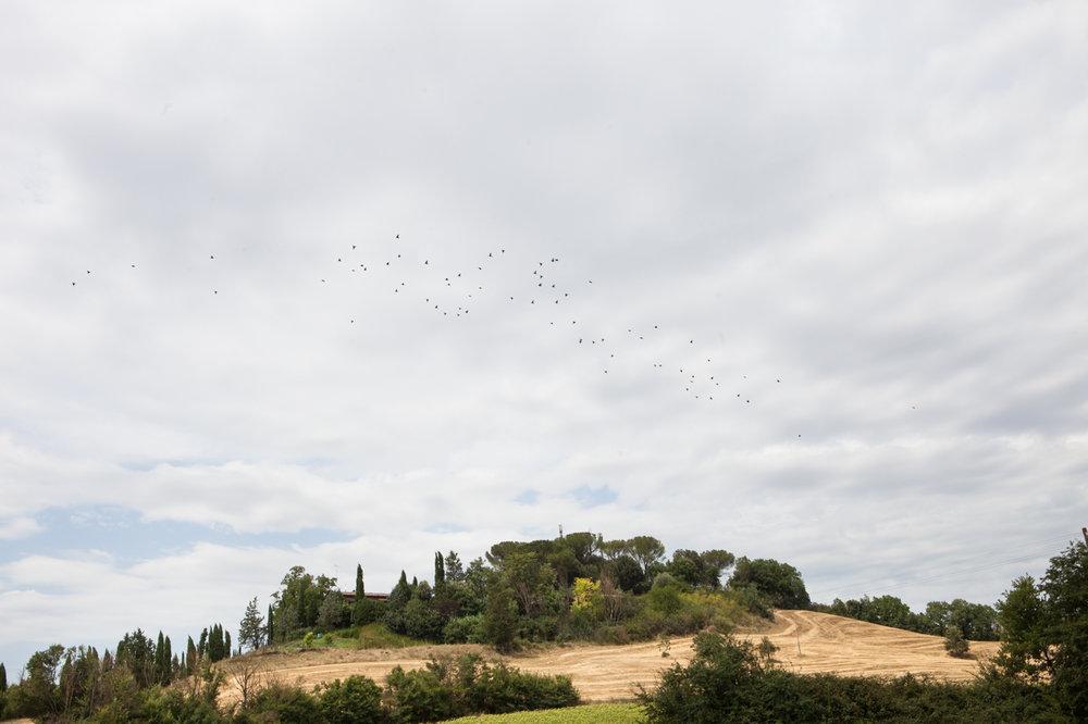 Tuscany & Florence-18.jpg