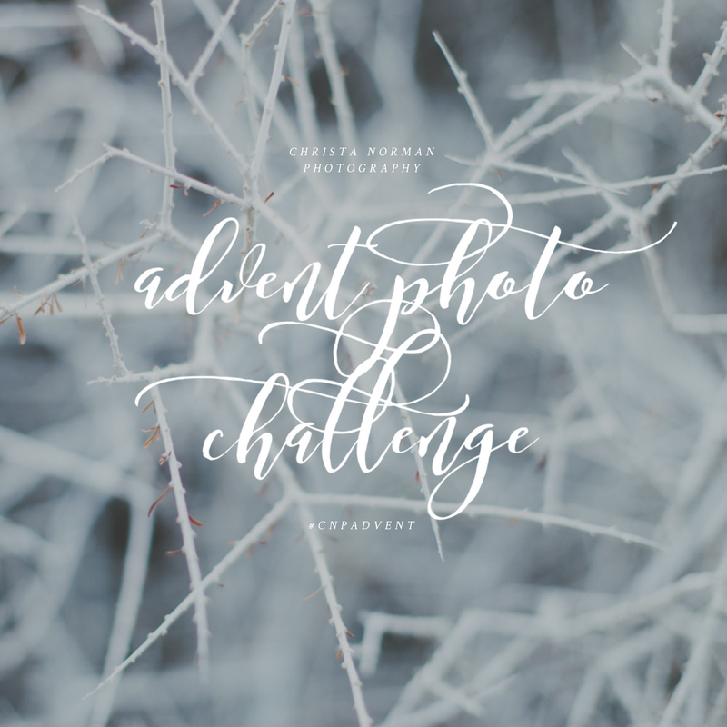 Advent Photo Challenge 1.png
